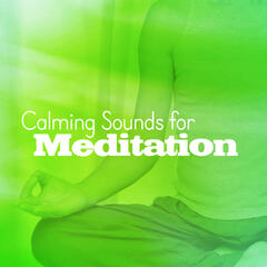 Calming Sounds for Meditation