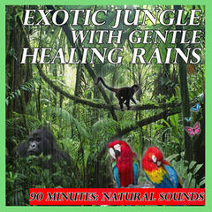 Exotic Jungle with Gentle Healing Rains: 90 Minutes: Natural Sounds