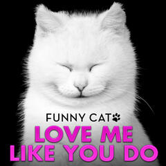 "Love Me Like You Do (From ""50 Shades of Grey"") [Funny Cats Singing Version]"