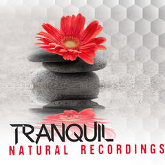 Tranquil Natural Recordings