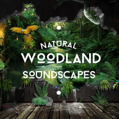 Natural Woodland Soundscapes