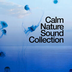 Calm Nature Sound Collection