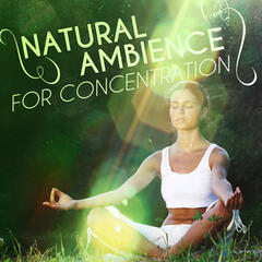 Natural Ambience for Concentration