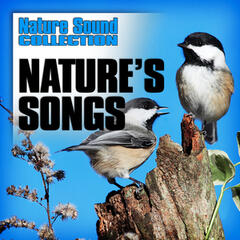 Nature's Songs (Nature Sounds)