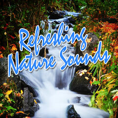 Refreshing Nature Sounds