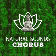 Natural Sounds Chorus