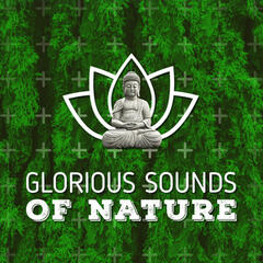 Glorious Sounds of Nature