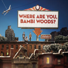 Where Are You, Bambi Woods?