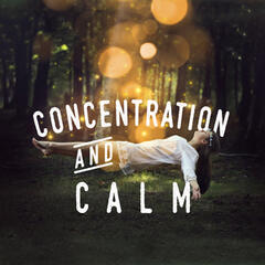 Concentration and Calm: White Noise