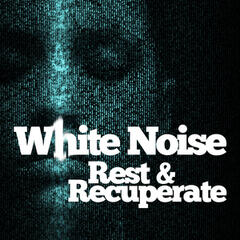 White Noise: Rest & Recuperate