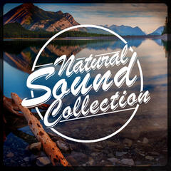 Natural Sound Collection