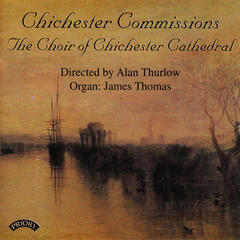 Chichester Commissions
