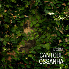 Canto de Ossanha - Single
