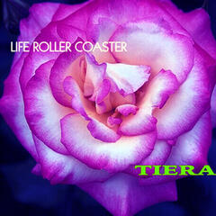 Life Roller Coaster
