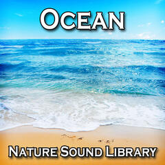 Ocean (Nature Sounds for Deep Sleep, Relaxation, Meditation, Spa, Sound Therapy, Studying, Healing Massage, Yoga and Chakra Balancing)