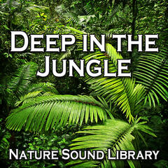 Deep in the Jungle (Nature Sounds for Deep Sleep, Relaxation, Meditation, Spa, Sound Therapy)