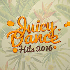 Juicy Dance Hits 2016