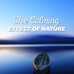 The Calming Effect of Nature