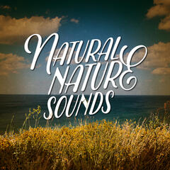 Natural Nature Sounds