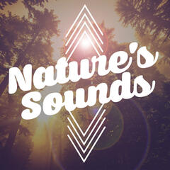 Nature's Sounds