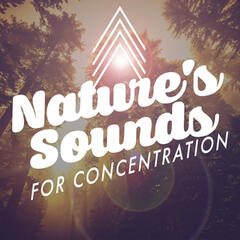 Nature's Sounds for Concentration