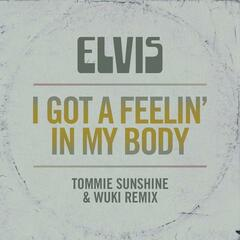 I Got a Feelin' in My Body (Tommie Sunshine & Wuki Remix)