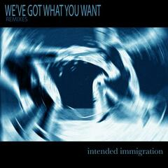 We've Got What You Want (Remixes)