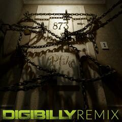 Room 873 (Digibilly Remix)