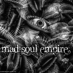 Mad Soul Empire