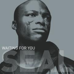 "Waiting For You (12""/CD Maxi 42656)"