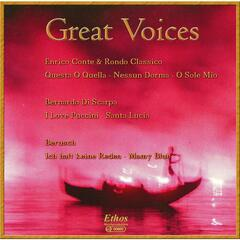 Great Voices (Reworks)