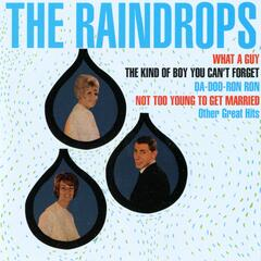 The Raindrops [Digital Version]