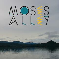 Moses Alley