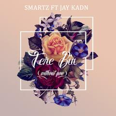 Tere Bin (Without You) [feat. Jay Kadn]