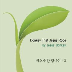 Donkey That Jesus Rode