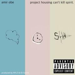 Project Housing Can't Kill Spirit