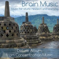 Brain Music - Music for Study, Revision and Learning