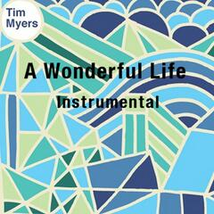 A Wonderful Life (Instrumental)