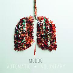 Automatic & Voluntary