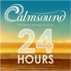 Relaxing Nature Sounds: 24 Hours of Exquisite Nature Sounds for Deep Sleep, Study, Meditation and Mindfulness