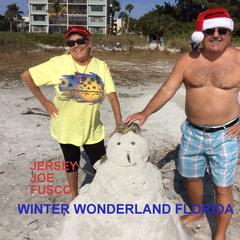 Winter Wonderland Florida