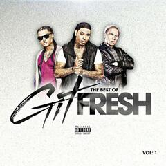 The Best of Git Fresh, Vol. 1