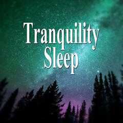 Tranquility Sleep - Relaxing Songs, Healing Music, Soothing Music, Music for Sleep, Nature Sounds, Stress Relief, Relax