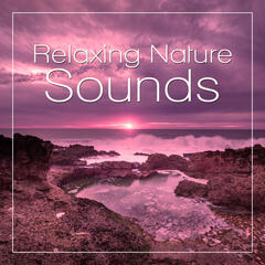 Relaxing Nature Sounds – Deep Sounds for Meditation, Rain Sounds, Calming Water Sounds, Soft Music for Relaxation, Ocean Noise