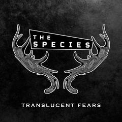 Translucent Fears