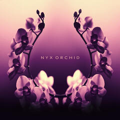 Nyx Orchid