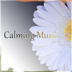 Calming Music – Sleep All Night Quietly, Natural Music for Healing Through Sound and Touch, Sleep Music to Help You Fall Asleep Easily