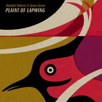 Plaint of Lapwing