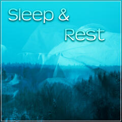 Sleep & Rest – Peaceful Sounds of Nature for Sleep to Help You Relax Before Sleep, Have a Nice Dream