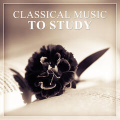 Classical Music to Study – Easy Exam, Classical Instruments to Study, Music for Concentration